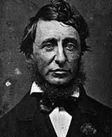 Summary and Analysis Thoreau s essay